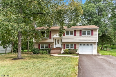Byram Twp. Single Family Home For Sale: 15 River Rd