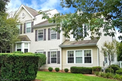 Somerset County Condo/Townhouse For Sale: 298 Enclave Ln