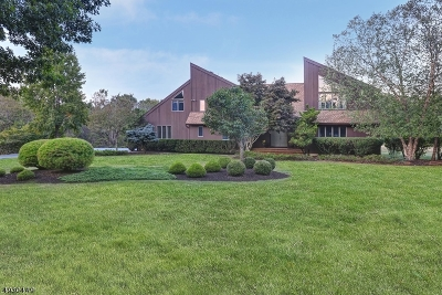 Montgomery Twp. Single Family Home For Sale: 60 Copper Vail Ct