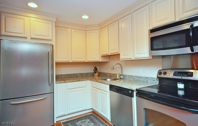 Somerset County Condo/Townhouse For Sale: 219 Alexandria Way