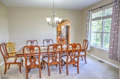 Somerset County Single Family Home For Sale: 27 Hasbrouck Dr