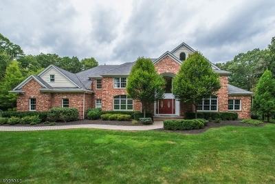 Boonton Twp. Single Family Home For Sale: 5 Julia