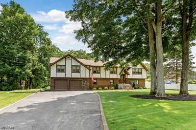 Roxbury Twp. Single Family Home For Sale: 318 Berkshire Valley Rd
