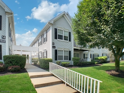 Somerset County Condo/Townhouse For Sale: 1416 Magnolia Ln
