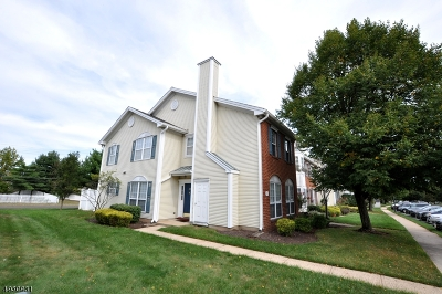 Somerset County Condo/Townhouse For Sale: 33 Columbus Dr