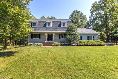 Bridgewater Twp. Single Family Home For Sale: 926 Papen Road