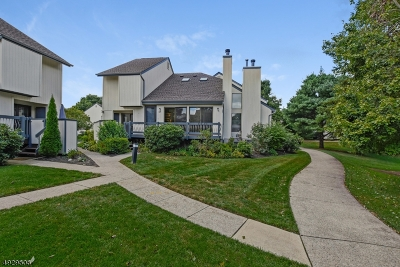 Somerset County Condo/Townhouse For Sale: 205 Locust Ln