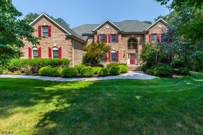 Montgomery Twp. Single Family Home For Sale: 107 Wild Azalea Ln