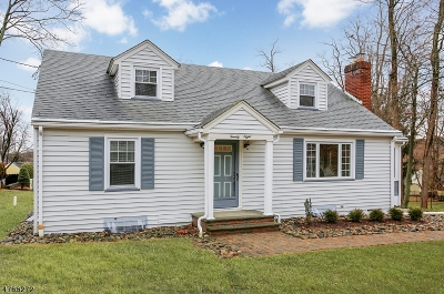 Somerset County Single Family Home For Sale: 28 Cedar Rd