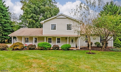 Somerset County Single Family Home For Sale: 8 Lemore Cir