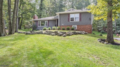 Bridgewater Twp. Single Family Home For Sale: 6 Redwood Rd