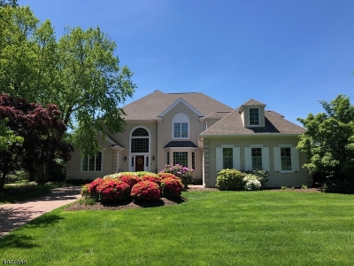 Somerset County Single Family Home For Sale: 17 Augusta Ct