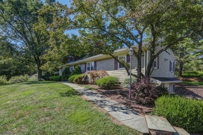 Somerset County Single Family Home For Sale: 55 Fairview Dr