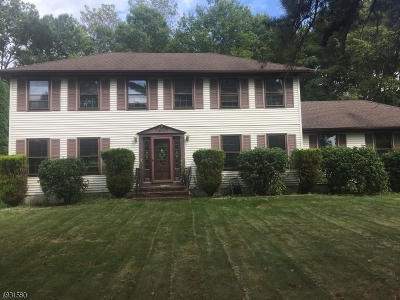 Roxbury Twp. Single Family Home For Sale: 2 Radcliffe Dr