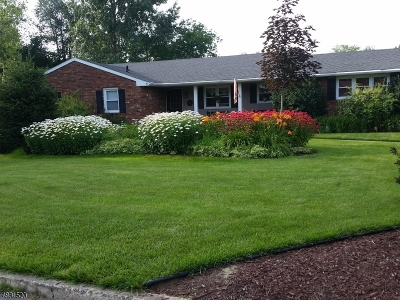 Warren County Single Family Home For Sale: 2 Plaza Pl