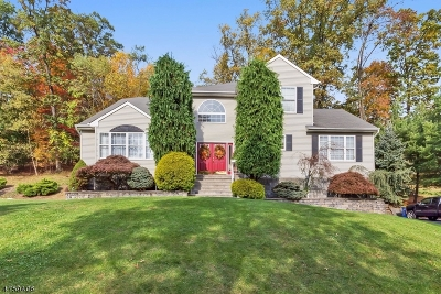 Hunterdon County, Somerset County Single Family Home For Sale: 506 Andrew Street