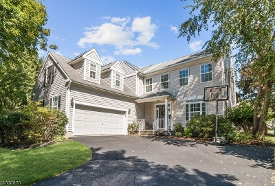 Hunterdon County, Somerset County Single Family Home For Sale: 35 Liberty Ridge Rd
