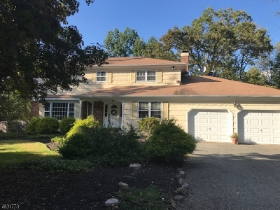 Hunterdon County, Somerset County Single Family Home For Sale: 95 Cherry Brook Dr