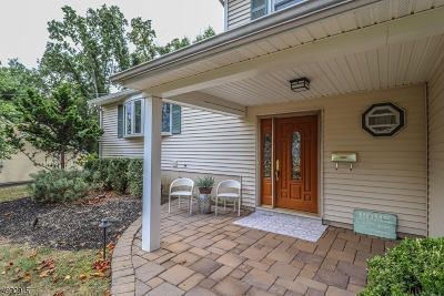 Hunterdon County, Somerset County Single Family Home For Sale: 937 W Meadow Drive