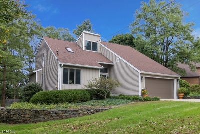 Hunterdon County, Somerset County Single Family Home For Sale: 4 Michael Ln