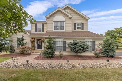 Hunterdon County, Somerset County Single Family Home For Sale: 7 Hardy Drive