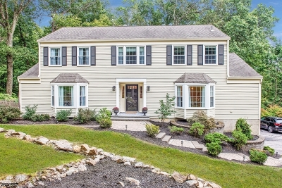 Randolph Twp. Single Family Home For Sale: 16 Laurel Hill Dr