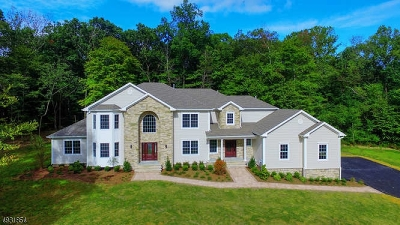 Randolph Twp. Single Family Home For Sale: 16 Waterfall Dr