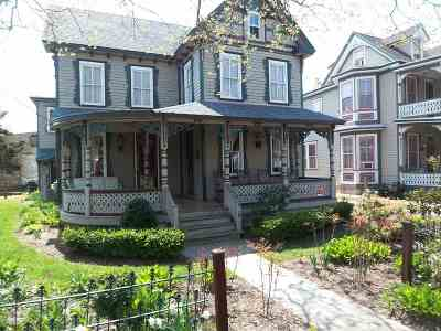 Single Family Home For Sale: 498 W Perry Street