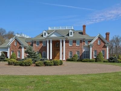 Bernards Twp. Single Family Home For Sale: 178 Liberty Corner Rd