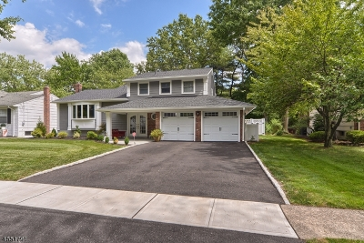 Springfield Twp. NJ Single Family Home Sold: $649,000
