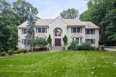 Randolph Twp. Single Family Home For Sale: 21 Chelsea Dr