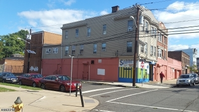 University Heights Commercial For Sale: 215-221 Sussex Ave