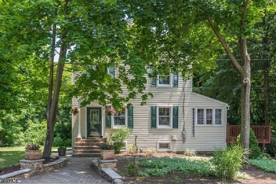 Randolph Twp. Single Family Home For Sale: 4 Overlook Rd