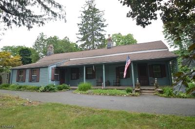 Florham Park Boro Single Family Home For Sale: 309 Brooklake Rd