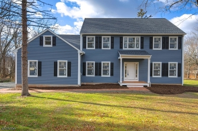 Bridgewater Twp. Single Family Home For Sale: 657 Foothill Rd