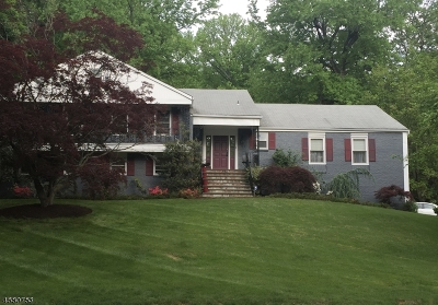 South Orange Village Twp. Single Family Home For Sale: 229 N Wyoming Ave