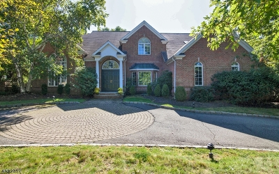 Livingston Twp. Single Family Home For Sale: 4 Hadrian Dr