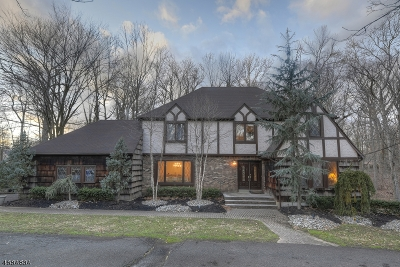 Woodbridge Twp. Single Family Home For Sale: 305 Middlesex Ave