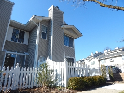 Bedminster Twp. Condo/Townhouse For Sale: 1 Ashley Ct