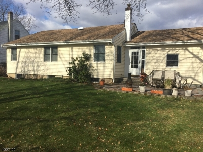 Edison Twp. Single Family Home For Sale: 52 Duley Ave