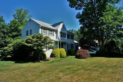 Randolph Twp. Single Family Home For Sale: 8 Trade Winds Dr