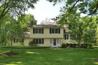 Bernards Twp. Single Family Home For Sale: 97 Lyons Pl