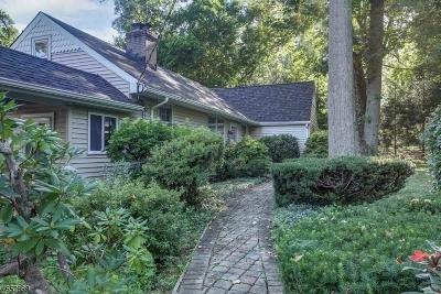 Warren Twp. Single Family Home For Sale: 126 Reinman Rd