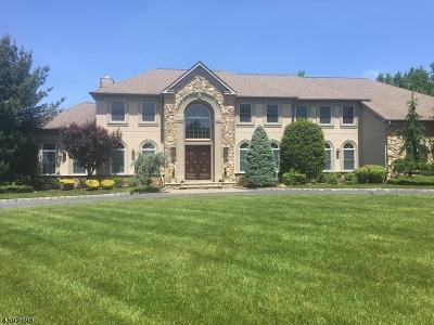 Scotch Plains Twp. Single Family Home For Sale: 9 Carri Farm Ct