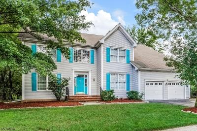 Bridgewater Twp. Single Family Home For Sale: 20 McBride Way