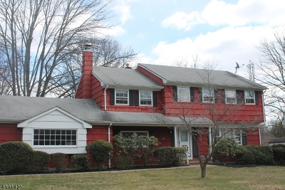 North Brunswick Twp. Single Family Home For Sale: 1054 Hoover Dr