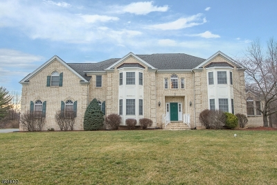 Hanover Single Family Home For Sale: 12 Briarwood Ct.