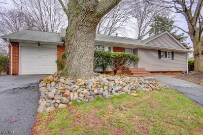 North Brunswick Twp. Single Family Home For Sale: 289 Clinton Rd