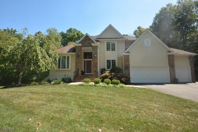 Randolph Twp. Single Family Home For Sale: 9 Bellatrix Rd