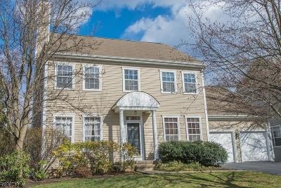 Bernards Twp. Single Family Home For Sale: 75 Carlisle Rd
